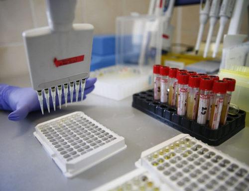 Новых случаев заболевания COVID-19 в Краснодарском крае не зарегистрировано